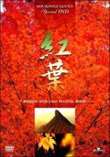 紅葉(もみじ)~autumn