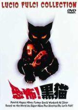 恐怖!黒猫