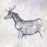 馬と鹿(通常盤)