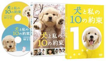 無料視聴あり!映画『犬と私の10の約束』の動画| …