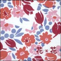 FOOT PRINT ~花*花WORKS 2000-2003