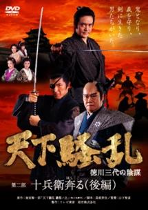 天下騒乱 徳川三代の陰謀3