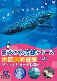 日本の水族館シリーズ 大阪 海遊館 ジンベエザメとその仲間たち