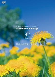 virtual trip 花 Flowers ~四季の山野草と高山植物