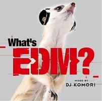 WHAT'S EDM? MIXED BY DJ KOMORI