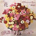假屋崎省吾の世界 花カレンダー 2015