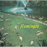 フラミンゴス