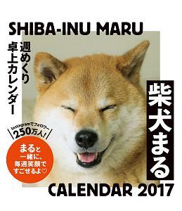 柴犬まる 週めくり卓上カレンダー 2017