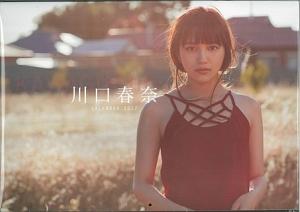 川口春奈 CALENDAR 2017