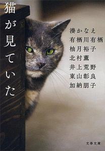 猫が見ていた
