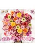 假屋崎省吾の世界 花カレンダー 2018