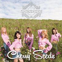 CHERRSEE『Cherry Seeds』
