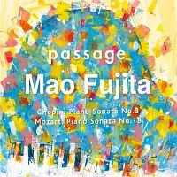 passage ショパン:ピアノ・ソナタ第3番