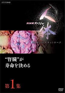 """NHKスペシャル 人体 神秘の巨大ネットワーク 第1集 """"腎臓""""が寿命を決める"""
