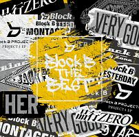 Block B THE BEST