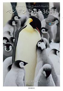ペンギンごよみ365日 愛くるしい姿に出会う癒やしの瞬間